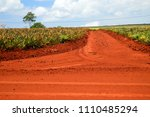 oxidized soil at a pineapple...   Shutterstock . vector #1110485294