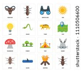 set of 16 icons such as ant ...
