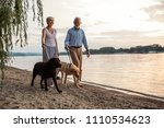 Stock photo shot of a happy senior couple walking by the river with their dogs 1110534623