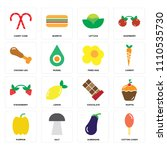 set of 16 icons such as cotton... | Shutterstock .eps vector #1110535730