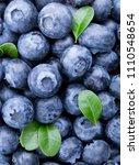 freshly picked blueberries... | Shutterstock . vector #1110548654