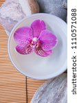 stones with orchid flowers in... | Shutterstock . vector #1110571088