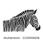 zebra  sketch for your design....