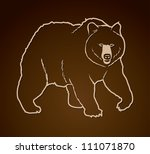Grizzly Bear   Vector...
