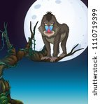 A Baboon On The Tree Night...