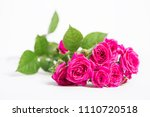 the pink rose isolated on a... | Shutterstock . vector #1110720518