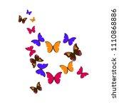 colorful heart of butterflies | Shutterstock .eps vector #1110868886