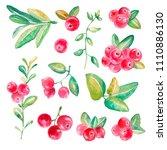 hand drawn watercolor set of...   Shutterstock . vector #1110886130