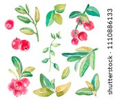 hand drawn watercolor set of... | Shutterstock . vector #1110886133