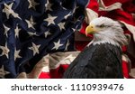 american bald eagle   symbol of ... | Shutterstock . vector #1110939476