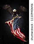 north american bald eagle... | Shutterstock . vector #1110940646
