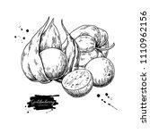physalis fruit vector drawing.... | Shutterstock .eps vector #1110962156