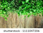 collection of fresh organic... | Shutterstock . vector #1111047206