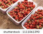 strawberry. strawberries in... | Shutterstock . vector #1111061390