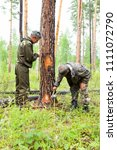 forestry inspector with a group ... | Shutterstock . vector #1111072790