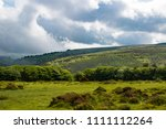 A view of the moor land of Dartmoor National Park, Devon, United Kingdom - stock photo