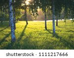summer landscape photography of ... | Shutterstock . vector #1111217666