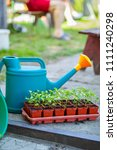 gardening on a country site in... | Shutterstock . vector #1111240298