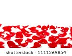 Stock photo red rose petals on white background 1111269854