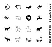 mammal icon. collection of 16... | Shutterstock .eps vector #1111396223