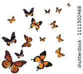 beautiful monarch butterfly...   Shutterstock . vector #1111502468