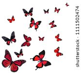 beautiful red butterfly flying... | Shutterstock . vector #1111502474
