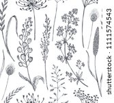 floral seamless pattern with... | Shutterstock .eps vector #1111574543