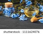 chicory  cichorium intybus ... | Shutterstock . vector #1111624076