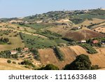 panoramic view of olive groves... | Shutterstock . vector #1111633688