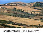 panoramic view of olive groves... | Shutterstock . vector #1111633994