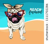 vector portrait of pug dog... | Shutterstock .eps vector #1111702286