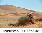 panoramic view of the red sand... | Shutterstock . vector #1111720280