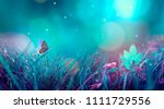 Stock photo butterfly in the grass on a meadow at night in the shining moonlight on nature in blue and purple 1111729556