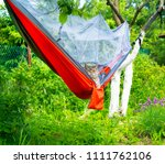 Stock photo cat in hammock outdoor camping 1111762106