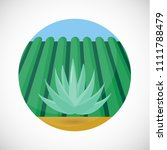 blue agave vector flat icon ... | Shutterstock .eps vector #1111788479