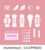 vector illustration of feminine ... | Shutterstock .eps vector #1111998020
