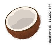 coconut tropical fruit | Shutterstock .eps vector #1112024699