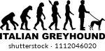 italian greyhound evolution... | Shutterstock .eps vector #1112046020