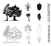burning tree  palm  acorn  dry... | Shutterstock .eps vector #1112065358