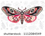 night tropical moths hawkmoth... | Shutterstock .eps vector #1112084549