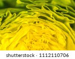 a closeup view into a fresh... | Shutterstock . vector #1112110706