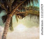 vintage palm background | Shutterstock . vector #111213929