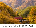 autumn fall foliage with red... | Shutterstock . vector #1112291549