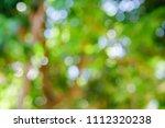 abstract green bokeh nature... | Shutterstock . vector #1112320238
