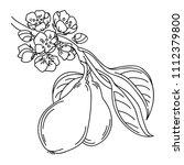 vector illustration of a pear... | Shutterstock .eps vector #1112379800