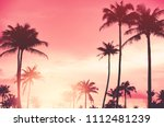 copy space of silhouette... | Shutterstock . vector #1112481239