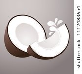vector coconut milk illustration | Shutterstock .eps vector #1112483654