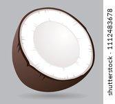 vector coconut icon on grey... | Shutterstock .eps vector #1112483678