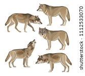set of gray wolves. vector... | Shutterstock .eps vector #1112533070