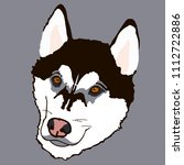 husky with brown eyes   Shutterstock .eps vector #1112722886